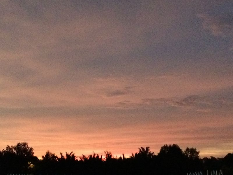 バトゥパハ河の夕焼け