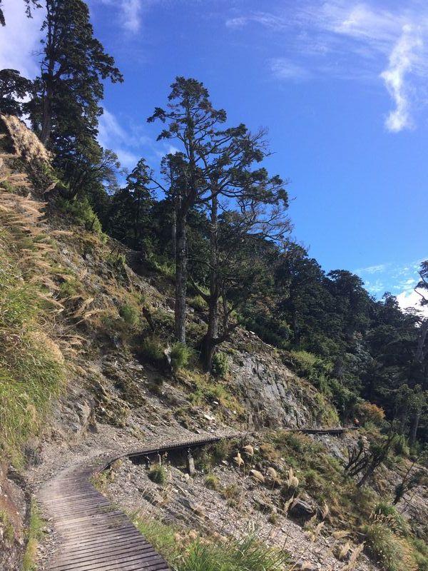 登山ルートとして道はとてもよく整備されている