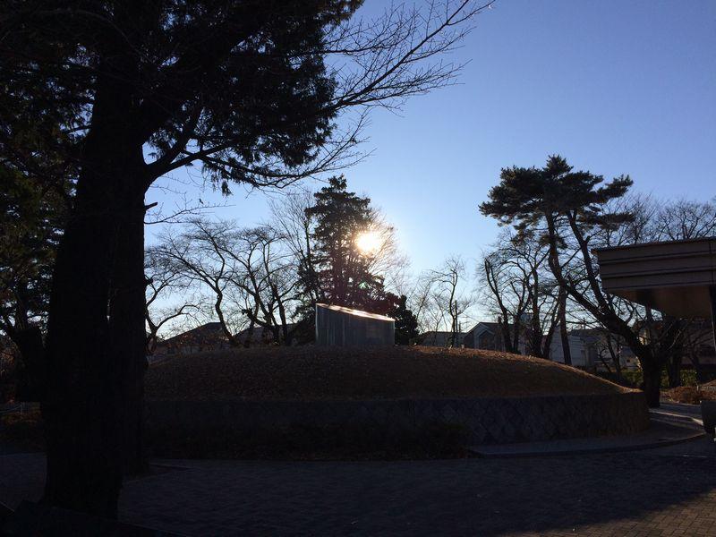 朝の小平霊園