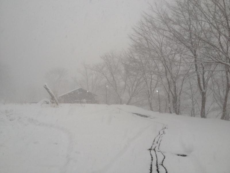 温泉小屋への道