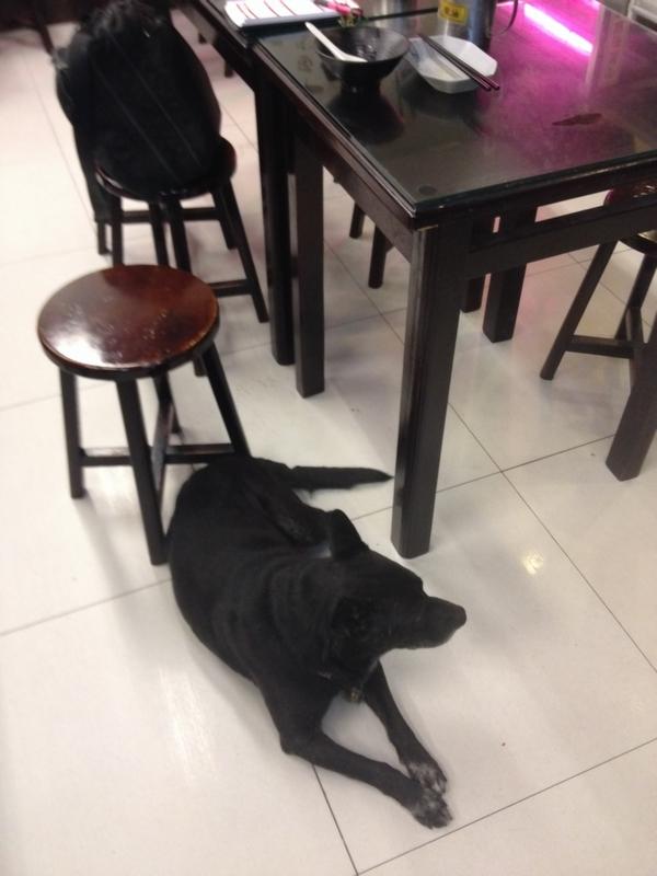 犬の名前はクロ