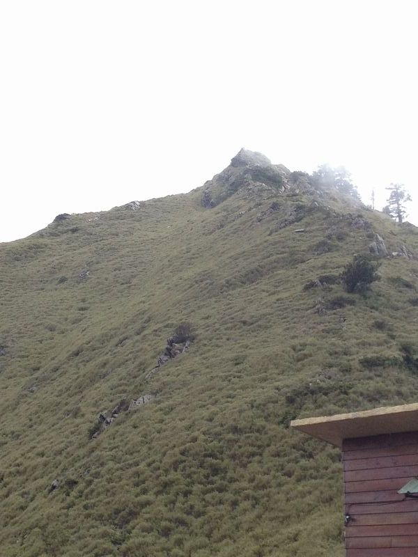 合歓山の山頂を見上げる