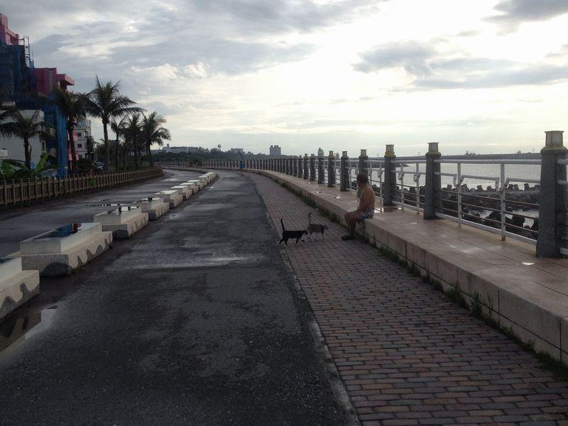 海岸沿いの遊歩道