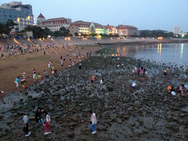 海岸で何かを探す人たち