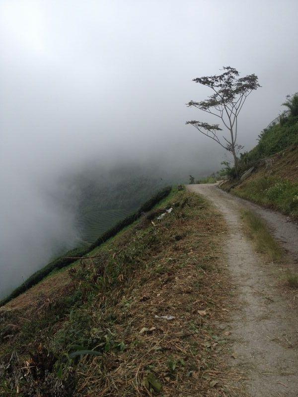 急な斜面に農道が続く
