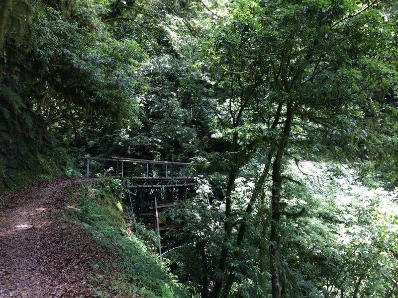 沢に架かる橋