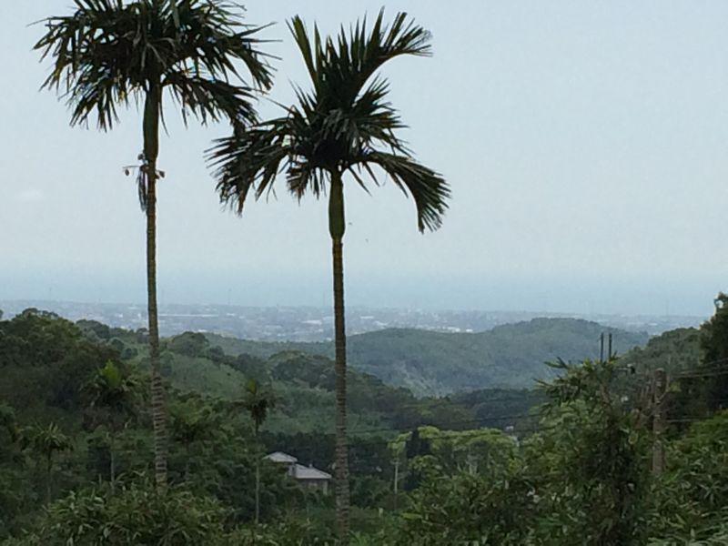 遠くに台湾海峡を望む