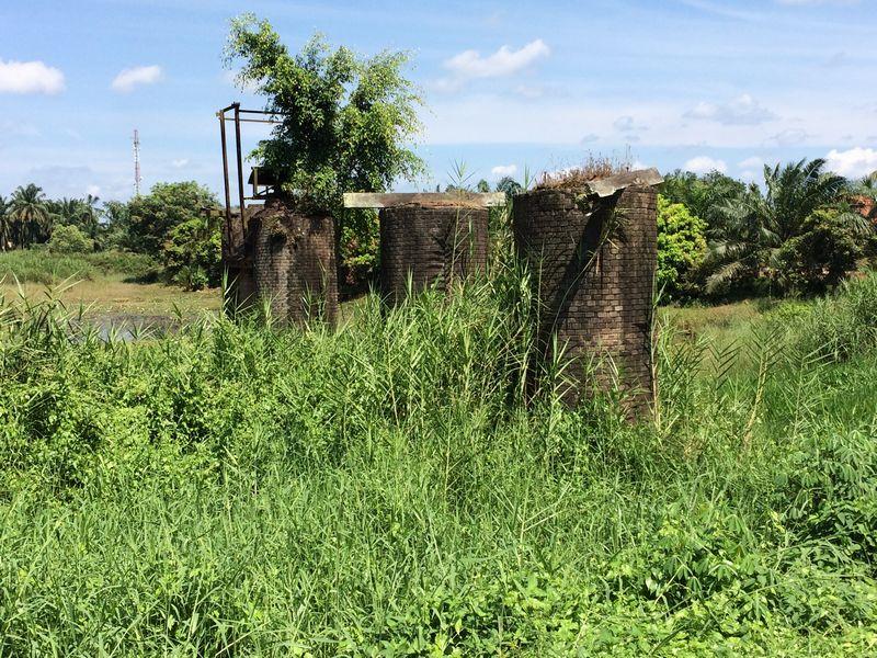 夏草に埋もれた橋脚